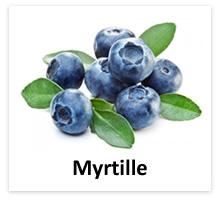 eliquide myrtille
